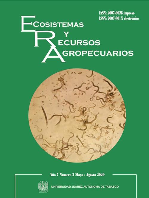 Nematodo Dorylaimus  presente en plántulas de Moringa. Martha Gómez Martínez